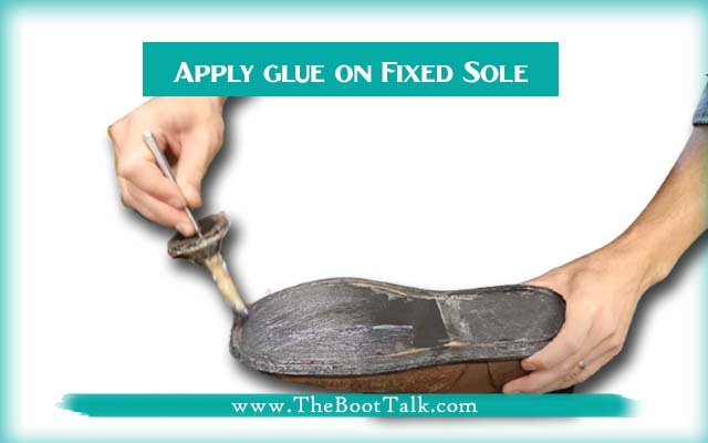 Apply glue on Fixed Sole
